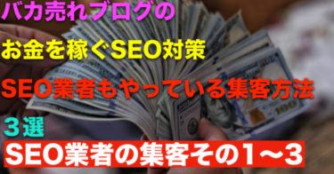 SEO業者の集客方法3選【バカ売れブログのお金を稼ぐSEO対策】