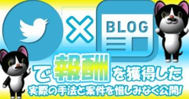 ツイッター×ブログで報酬を獲得した実際の手法と案件を公開しています。