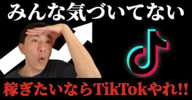 TikTokの教科書~動画でわかるフォロワー増やす方法~【入門】