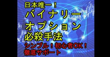 【トレード知識不要】日本唯一!即日実践!バイナリー超攻略法!